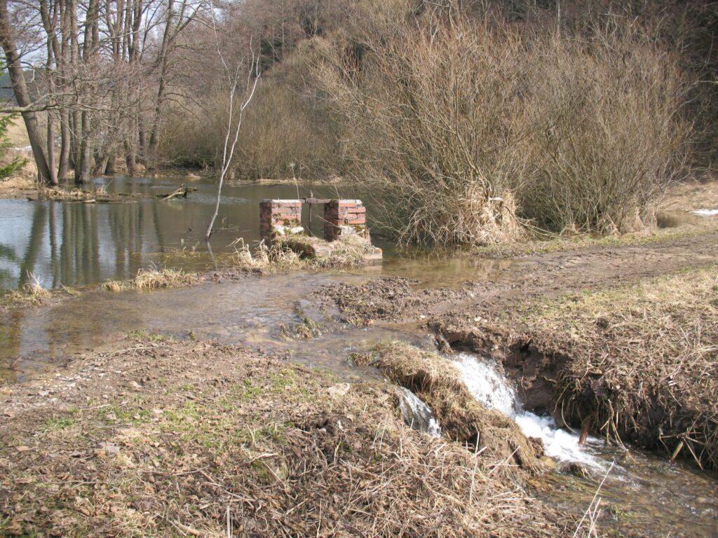 Lukavský rybníček při jarním tání 2010. Problém volné krajiny - minimum vodních ploch a mokřadů. Tato nepovolelná vodní plocha se stala útočištěm vzácných mokřadních druhů rostlin. Ty jsou ale ohroženy, neboť jakmile se protrhne hráz, umělý mokřad se vysuší. RVT oproti původnímu záměru prohloubit 2/3 plochy nádrže na návrh Správy CHKO Broumovsko vzhledem k výskytu druhů omezí zásah do biotopu na opravu hráze. (foto J. Malík, jaro 2010)